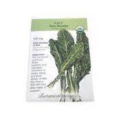Botanical Interests Organic Heirloom Nero Italian Kale Seed