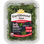 Earthbound Farms Organic Kale Italia Deep Green Blends