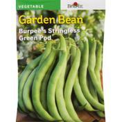Burpee Garden Bean Stringless Green Pod