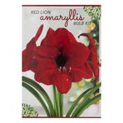 Garden State Bulb Company Red Lion Amaryllis Bulb Kit