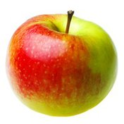 Crimson Gold Apple Bag