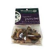 Myco Logical Dried Imported Porcini Mushrooms