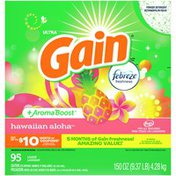 Gain Powder Laundry Detergent For Regular And He Washers, Hawaiian Aloha Scent,