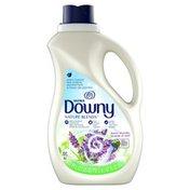 Downy Liquid Fabric Conditioner (Fabric Softener), Honey Lavender,