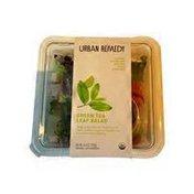 Urban Remedy Green Tea Leaf Salad