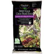 Taylor Farms Salad Kit, Sweet Kale, Chopped