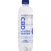 CBD Living Water Water, Living, CBD + Alkaline, 9+ pH