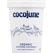 Cocojune Cultured Coconut, Organic, Pure Coconut