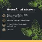 Burt's Bees Toothpaste, Natural Flavor, Charcoal Fluoride-Free Toothpaste, Zen