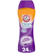 Arm & Hammer Clean Scentsations with Odor Blasters In Wash Scent Booster