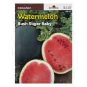 Burpee Seeds, Organic, Watermelon, Bush Sugar Baby