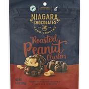Niagara Chocolates Peanut Clusters, Roasted