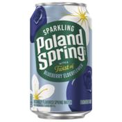 Poland spring Sparkling Water, Blueberry Elderflower