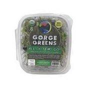Gorge Greens Organic Microgreens Mix - All Systems Go