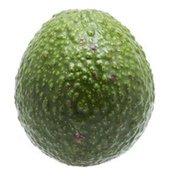 Organic Reed Avocado