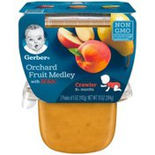 Gerber 3F Orchard Fruit Medley with Lil' Bits Gerber 3rd Foods Lil' Bits Orchard Fruit Medley Baby Food