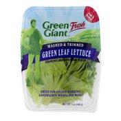 Green Giant Fresh Green Leaf Lettuce