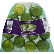 Earth Source Coast Tropical Limes, Persian