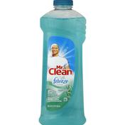 Mr. Clean Multi-Purpose Cleaner, Meadows & Rain