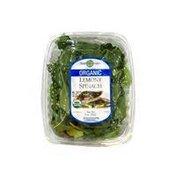 EarthGreens Organic Lemony Spinach Blend