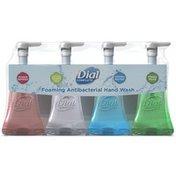 Dial Foaming Antibacterial Hand Wash Dial Complete Foaming Antibacterial Hand Wash Variety Pack