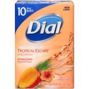 Dial Antibacterial Deodorant Bar Soap, Tropical Escape