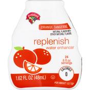 Hannaford Orange Tangerine Replenish Water Enhancer