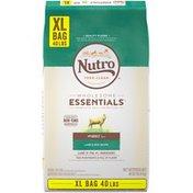 NUTRO Lamb & Rice Recipe Adult 1+ Years Nutro Feed Clean Wholesome Essentials Lamb & Rice Recipe Adult 1+ Years Dog Food