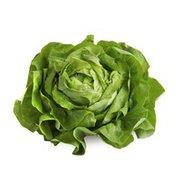 Produce Organic Living Green Lettuce Butter Clamshell