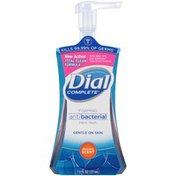 Dial Complete Antibacterial Foaming Hand Wash, Original