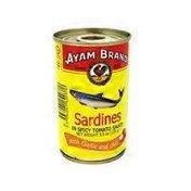 Ayam Brand Sardines in Spicy Garlic Tomato