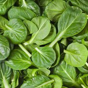 Sun Harvest Organic Tender Young Leaves Baby Spinach