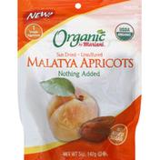 Mariani Malatya Apricots, Sundried, Unsulfured