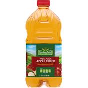 Springfield 100% Juice, Apple Cider