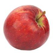 Gloster Apple Bag