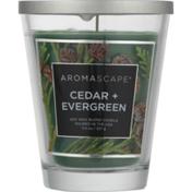 Aromascape Candle, Cedar + Evergreen, Jar