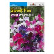 Burpee Sweet Pea Seeds