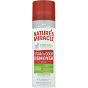 Nature's Miracle Stain & Odor Remover, Dog, Foam