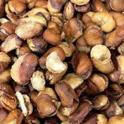 Roasted Salted Fava Beans