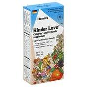 Floradix Multivitamin, Children's, Kinder Love, Vegetarian Liquid Formula