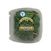 Uncle Vinny's Baby Spinach