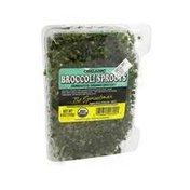 Papaya Organic Broccoli Sprouts