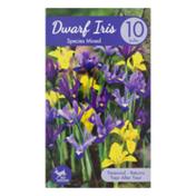 Garden State Bulb Company Dwarf Iris Species Mixed