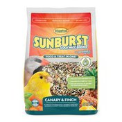 Higgins Lil Fruits Canary & Finch Sunburst Treat Stick