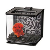 Marina 0.7-Gallon Betta EZ-Care Black Aquarium Kit