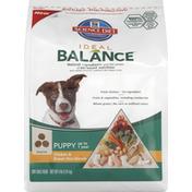Hill's Science Diet Dog Food, Dry, Puppy, Chicken & Brown Rice Dinner