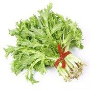 Organic Escarole Lettuce