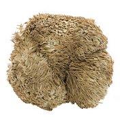 Organic Lion's Mane Mushrooms
