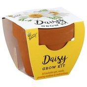 Buzzy Grow Kit, Daisy