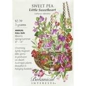 Botanical Interests Seeds, Sweet Pea, Little Sweetheart